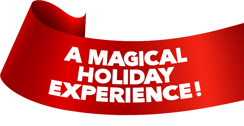 Christmas Celebration! Dinner Show - A Magical Holiday Experience